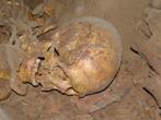 Cráneo Wenceslao -cueva Dos Hermanos