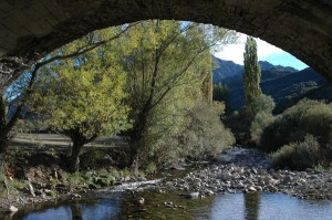 Rio Curueño