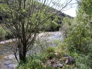 Rio Curueño en Gallegos de Curueño